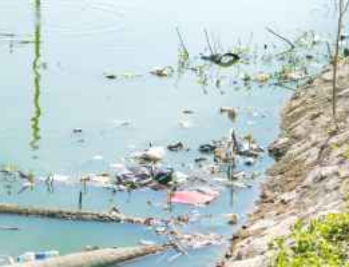 Water Pollution Essay In English For Kids Students