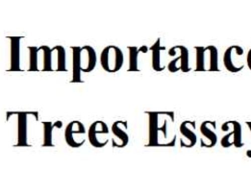 Importance of Trees Essay In English For Kids